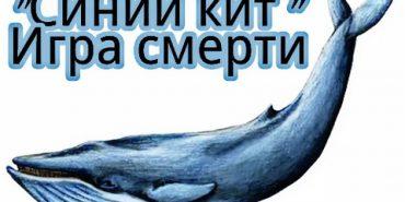 """Обережно – """"Синій кит"""": прикарпатським школярам приходять запрошення в суїцидальну гру"""