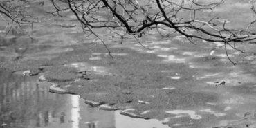 На Прикарпатті очікується потепління та дощ