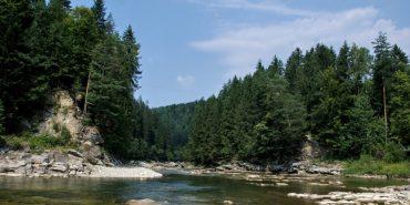 Між смереками та біля річки: 5 садиб на Прикарпатті для сімейного відпочинку