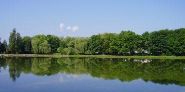 У коломийському озері врятували п'яного чоловіка