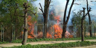 У Коломиї трапилася пожежа неподалік тенісних кортів. ФОТО