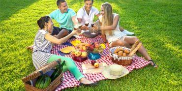 Безпечний пікнік: як вберегтися від харчового отруєння
