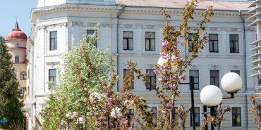 Куди піти у Коломиї: афіша вікенду 8 – 10 березня