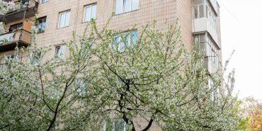 Дощ і сильний вітер: погода в Коломиї на 10 березня