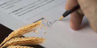 На Прикарпатті видали першу аграрну розписку