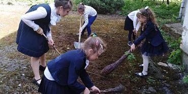У Коломиї школярі долучилися до озеленення території міста. ФОТО