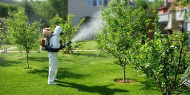 Мешканці Прикарпаття скаржаться на обробку городів пестицидами