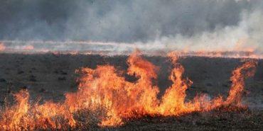 Під час пожежі сухої трави на Прикарпатті згорів мікроавтобус