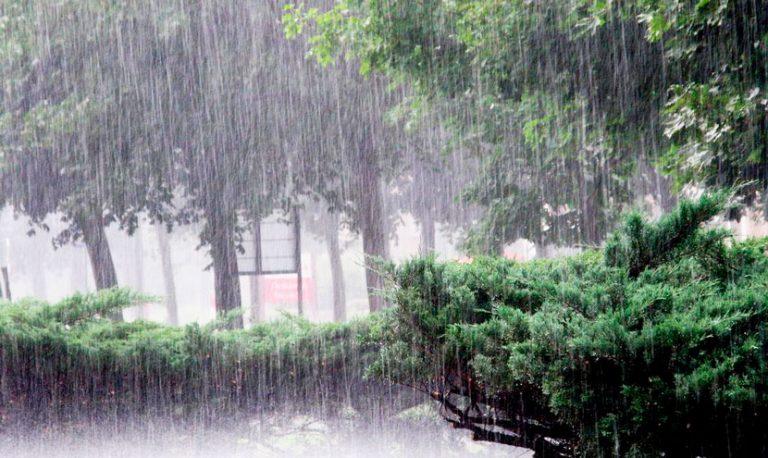 Сильні дощі та грози: на Прикарпатті оголосили штормове попередження