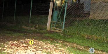 На Прикарпатті 30-річний чоловік поранив ножем двох хлопців. ФОТО