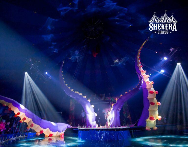 """До Коломиї завітає цирк на воді """"SHEKERA"""""""