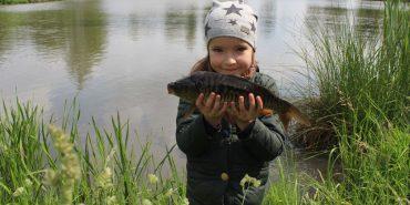 Коломияни запустили в озеро 80 кілограмів риби. ВІДЕО
