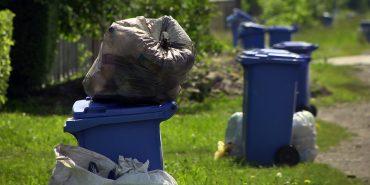 Мешканці Коломийщини нарікають, що АVЕ тижнями не вивозить сміття. ВІДЕО