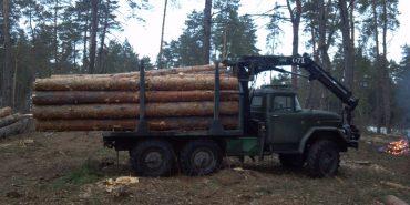 На Прикарпатті виявили вантажівку з краденим лісом