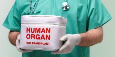 Президент підписав закон про трансплантацію органів