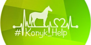 """Благодійний фонд """"Коник Хелп"""" завершив у Коломиї проект """"Соціальний візит"""". ВІДЕО"""