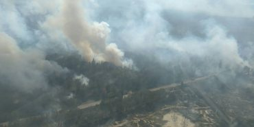 У Чорнобильській зоні горять ліси. ФОТО