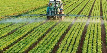 На Коломийщині почастішали випадки порушень правил застосування отрутохімікатів