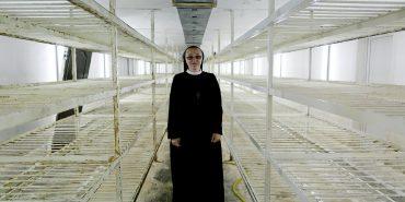 Стартап, сестро. Монахині вирощують шампіньйони, роблять макарони та встановлюють сонячні колектори. ФОТО