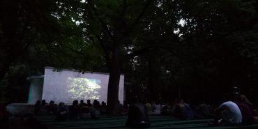 Сьогодні коломиян запрошують на кіно під відкритим небом. АНОНС