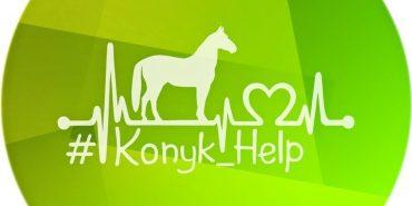 """""""Що ти знаєш про трансплантацію?"""" Соціальний ролик від Konyk Help"""