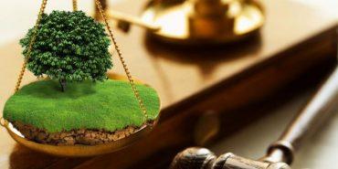 Коломийська прокуратура вимагає повернути незаконно привласнені землі вартістю понад 4 млн грн