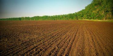 Українці зможуть обмінюватися земельними ділянками