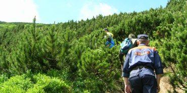 У Карпатах заблукала група туристів