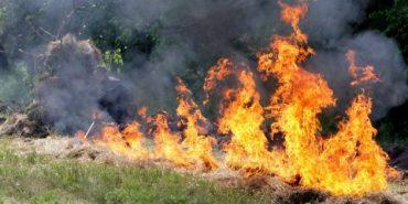 Прикарпатців попереджають про надзвичайний рівень пожежної небезпеки