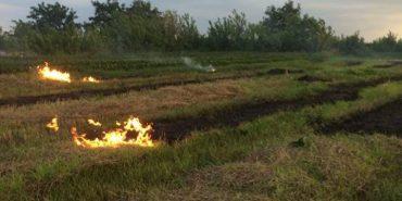 Городенківські рятувальники гасили пожежу стерні. ФОТОФАКТ