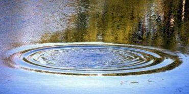 На Франківщині у ставку втопився 34-річний чоловік