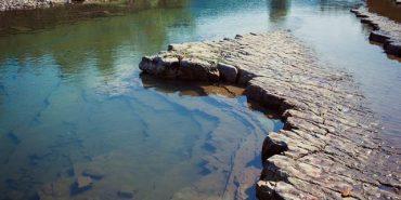 Краса Карпат: неймовірні фото