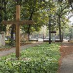 Єврейське кладовище (7)
