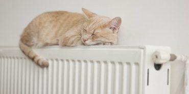 Чи вмикаєте опалення у помешканні?