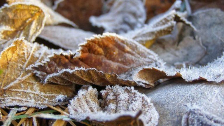 В листопаді очікується різке похолодання