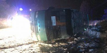 ДТП на Франківщині: рейсовий автобус перекинувся у кювет. ФОТО