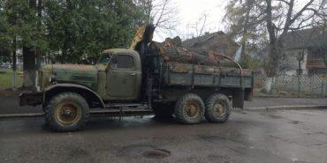 На Косівщині чоловіка повторно спіймали за незаконну вирубку лісу
