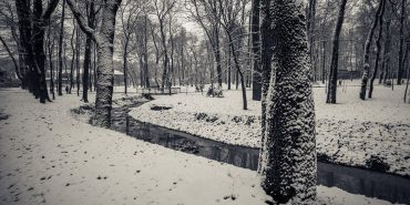 Зима у Коломиї: як виглядає окутаний снігом парк Трильовського. ФОТО