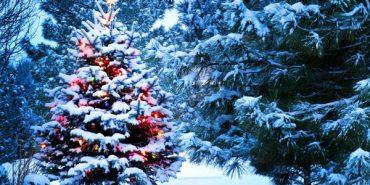 Синоптики розповіли, якою буде погода на новорічні свята
