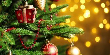 Головна ялинка Прикарпаття засяє 13 грудня