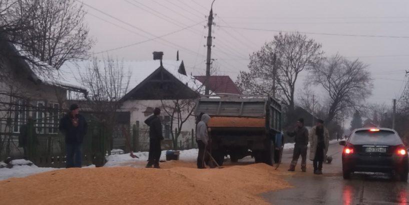 Кукурудза на дорозі