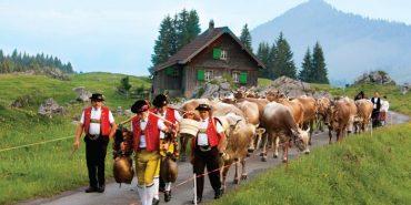 Як постелиш, так виспишся: приклад Швайцарії. ФОТО