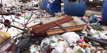 Коломияни знову скаржаться, що компанія AVE не вивозить сміття. ФОТО