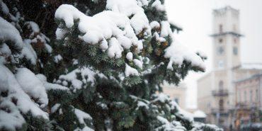 Куди піти у Коломиї: афіша вікенду 7 - 9 грудня