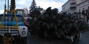 Головну різдвяну ялинку міста привезли до Коломиї. ФОТОФАКТ