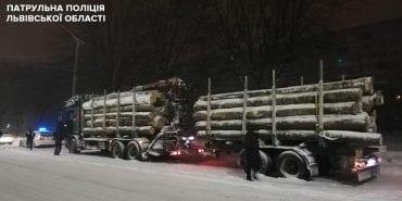 У Львові виявили дві вантажівки з буком без документів, який везли з Франківщини. ФОТО