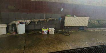 В Івано-Франківській області патрульні самі миють свої службові машини. ФОТО