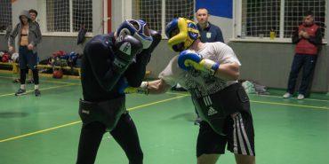 Як у Коломиї тренувалась  Національна збірна України з боксу. ФОТО