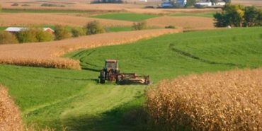 Цього року Урядом України передбачено фінансову підтримку спеціально для фермерів та кооперативів