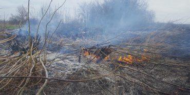 Підпали на Коломийщині невипадкові, це цілеспрямована акція певних осіб, – Міністр екології Остап Семерак